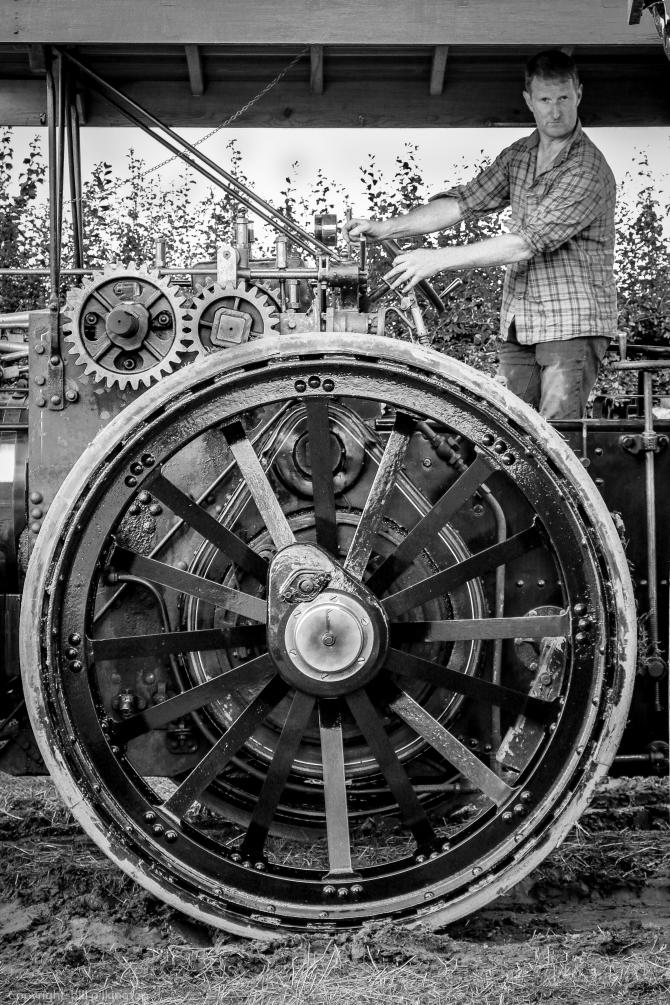 cheshire steam show